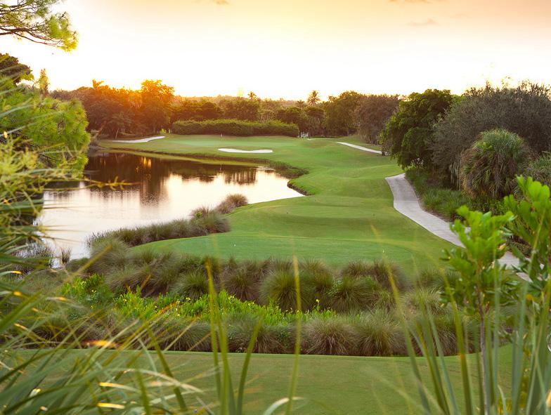 LaPlaya Beach and Golf Club - golf