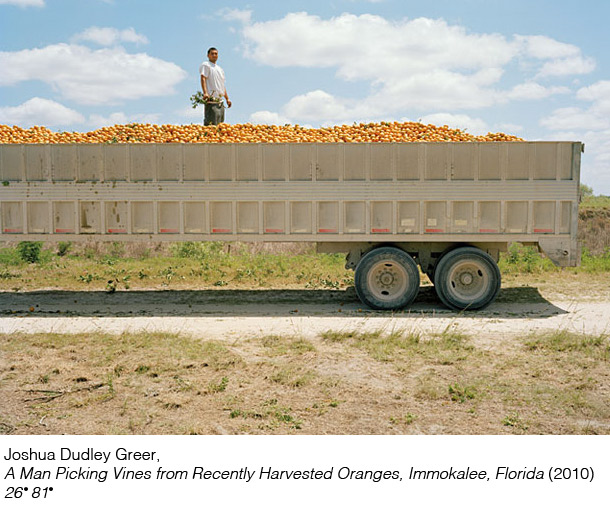 26 81 - photographed by Joshua Dudley Greer - Immokalee