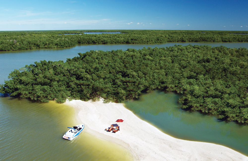 Deserted stretches of sandy beach may be found by boaters exploring the mangrove forests in the Ten Thousand Islands coastal estuary.